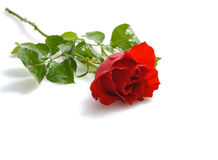 Gift for St.Valentine's Day Stock Image