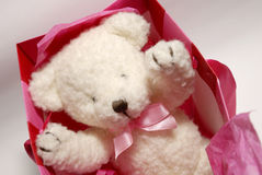 Gift teddybear Royalty Free Stock Photography