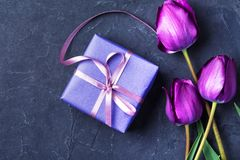 Gift and tulip Stock Photos