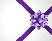 Gift violet bow Royalty Free Stock Images