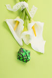 Gift and white lilly flowers on green Royalty Free Stock Photography