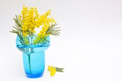 Gift by Womens Flowers in vase Stock Photography