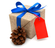 Gift wrapped blue ribbon Stock Image