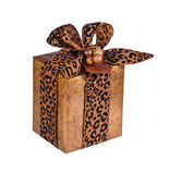 Gift wrapped present isolated Royalty Free Stock Photography