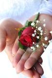 Gifta sig Royaltyfria Foton