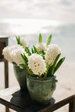 gifta sig för blommor Arkivfoton