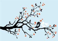 gifta sig för fåglar stock illustrationer