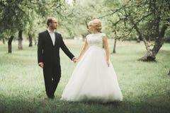 Gifta sig händer för parbrud- och brudguminnehav arkivfoton