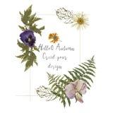 Gifta sig invitera ormbunksbladet för ormbunken för skogen för designen för grönska för inbjudankortet den blom-, ört för lövverk fotografering för bildbyråer