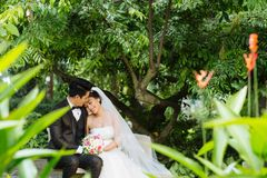 Gifta sig par i trädgård Arkivbild