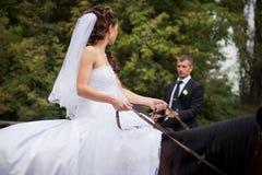 Gifta sig par på hästar Arkivfoto