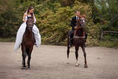 Gifta sig par på hästar Royaltyfri Bild