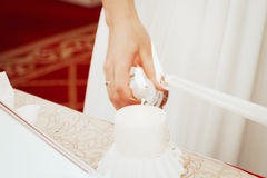 Gifta sig symboler, attribut Royaltyfri Bild