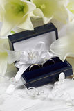 gifta sig white Royaltyfri Foto