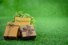 Giftbox lizenzfreies stockfoto