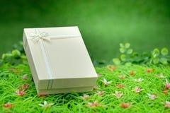 Giftbox Fotografía de archivo