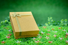 Giftbox Fotos de Stock Royalty Free
