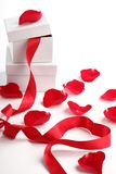 Giftbox and rose petal Royalty Free Stock Photo