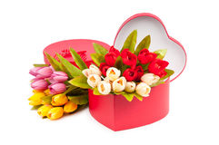 Giftbox and tulips Royalty Free Stock Photo