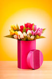 Giftbox and tulips against gradient Stock Photos