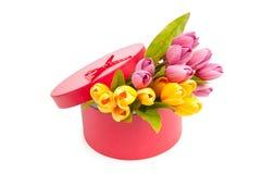 Giftbox y tulipanes Imágenes de archivo libres de regalías
