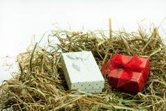 Giftdoos met boog in het Pasen-nest Royalty-vrije Stock Foto's