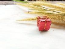 Giftdoos van aard en bloemen stock afbeelding