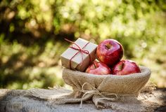 Giften van de herfst Oogst van appelen Rode appelen in een mand Stock Foto