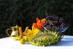 Giften van de Herfst - zonnebloem, zonnebloemzaden, oranje bloemen Royalty-vrije Stock Foto's