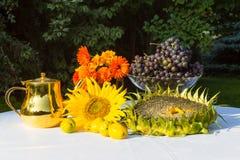 Giften van de Herfst - zonnebloem, zonnebloemzaden, oranje bloemen, vi Royalty-vrije Stock Afbeeldingen