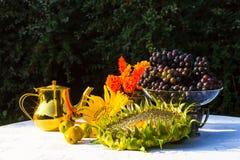 Giften van de Herfst - zonnebloem, zonnebloemzaden, oranje bloemen, vi Royalty-vrije Stock Foto