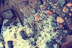 Giftig Strand royalty-vrije stock afbeeldingen