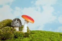 Giftige paddestoelen voor een fairytale Royalty-vrije Stock Afbeelding