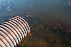 Giftiges Wasser Lizenzfreies Stockfoto
