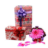 Gifts. Two gift boxes and peony flower Royalty Free Stock Images