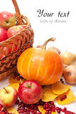 Gifts of Autumn Royalty Free Stock Images