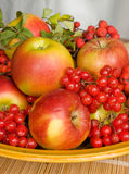 Gifts of autumn. The image of a plate with autumn fruits Stock Photo