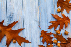 Gifts autumn wooden background vintage composition Royalty Free Stock Image