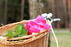 Gifts in bicycle basket Stock Photos