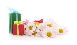 Gifts with chamomile. Gifts with chamomile on a white background Stock Image
