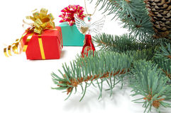 Gifts on fur-tree branches Stock Photos