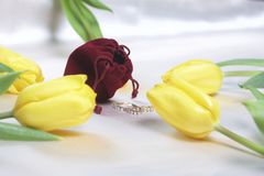 Gifts for loved ones. A bouquet of yellow and pink tulips is scattered on a light surface. Nearby is an open velvet bag of red col. Or with gold jewelry Royalty Free Stock Images
