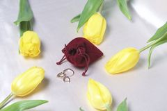 Gifts for loved ones. A bouquet of yellow and pink tulips is scattered on a light surface. Nearby is an open velvet bag of red col. Or with gold jewelry Royalty Free Stock Image