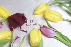 Gifts for loved ones. A bouquet of yellow and pink tulips is scattered on a light surface. Nearby is an open velvet bag of red col. Or with gold jewelry Stock Images