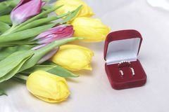 Gifts for loved ones. A bouquet of yellow and pink tulips is scattered on a light surface. Nearby is an open velvet box of red col. Or with gold jewelry Royalty Free Stock Image