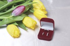 Gifts for loved ones. A bouquet of yellow and pink tulips is scattered on a light surface. Nearby is an open velvet box of red col. Or with gold jewelry Royalty Free Stock Photos