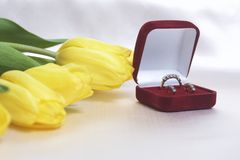 Gifts for loved ones. A bouquet of yellow tulips is scattered on a light surface. Nearby is an open velvet box of red color with g. Old jewelry stock photography