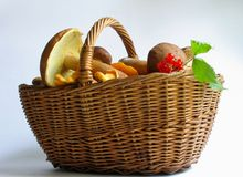 The gifts of nature. Basket full of mushrooms and berries Royalty Free Stock Photography