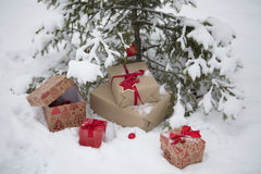 Gifts under the Christmas tree Royalty Free Stock Photography