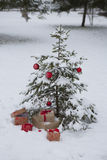 Gifts under the Christmas tree,  background Royalty Free Stock Image